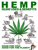 Hemp-50000-Uses-and-Benefits-768x1024